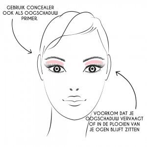 concealer 2. eyeshadow primer